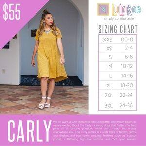 LuLaRoe Dresses - LuLaRoe Carly 2XL